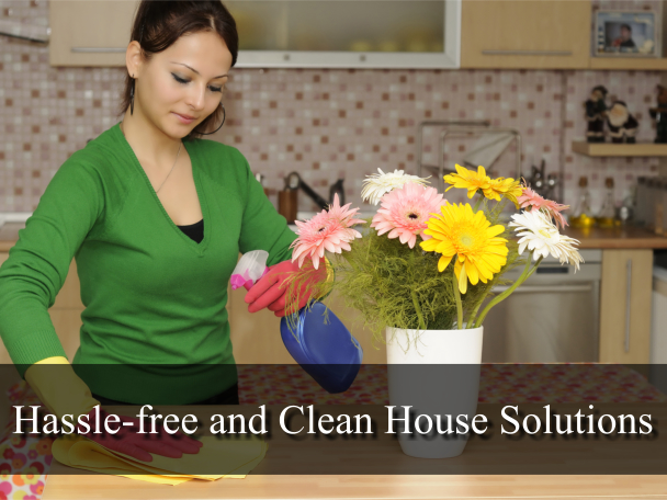 Hassle-free and Clean House Solutions